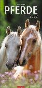 Cover-Bild zu Stuewer, Sabine: Pferde Kalender 2022