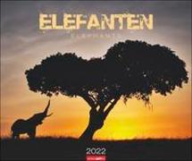 Cover-Bild zu Weingarten (Hrsg.): Elefanten Kalender 2022