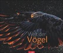 Cover-Bild zu Weingarten (Hrsg.): Welt der Vögel Kalender 2022