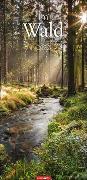 Cover-Bild zu Weingarten (Hrsg.): Im Wald Kalender 2022