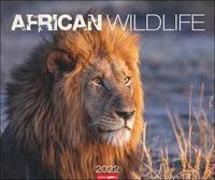 Cover-Bild zu Weingarten (Hrsg.): African Wildlife Kalender 2022