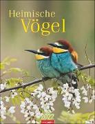 Cover-Bild zu Weingarten (Hrsg.): Heimische Vögel Kalender 2022
