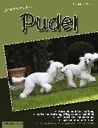 Cover-Bild zu Zellers, Katharina: Unser Traumhund: Pudel (eBook)