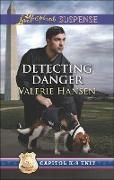 Cover-Bild zu Detecting Danger (eBook) von Hansen, Valerie
