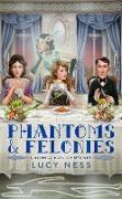 Cover-Bild zu Phantoms and Felonies (eBook) von Ness, Lucy