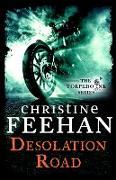 Cover-Bild zu Desolation Road (eBook) von Feehan, Christine