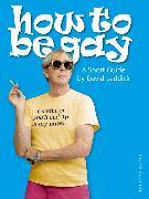 Cover-Bild zu Leddick, David: How to Be Gay (eBook)