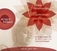 Cover-Bild zu Vollkommen unvollkommen von Mannschatz, Marie