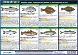 Cover-Bild zu Info-Tafel-Set Meeresfische von Schulze, Michael