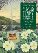 Cover-Bild zu The Druid Plant Oracle: Working with the Magical Flora of the Druid Tradition von Carr-Gomm, Philip