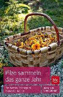 Cover-Bild zu Pilze sammeln das ganze Jahr von Grünert, Helmut