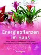 Cover-Bild zu Energiepflanzen im Haus von Hoffmann, Eva Katharina