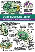 Cover-Bild zu Gehirngerecht lernen von Gasser, Peter