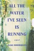 Cover-Bild zu All the Water I've Seen Is Running: A Novel (eBook) von Rodriques, Elias