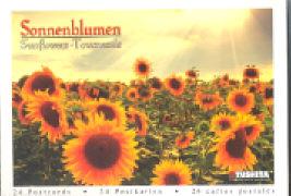 Cover-Bild zu Sonnenblumen