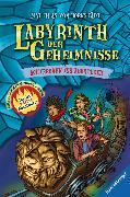 Cover-Bild zu Labyrinth der Geheimnisse 1: Achterbahn ins Abenteuer (eBook) von Bornstädt, Matthias