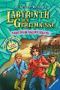Cover-Bild zu Labyrinth der Geheimnisse 7: Wirbelsturm über Witterstein (eBook) von Bornstädt, Matthias