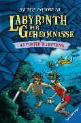 Cover-Bild zu Labyrinth der Geheimnisse, Band 6: Taucher im Teufelssee (eBook) von Bornstädt, Matthias