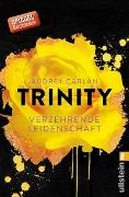 Cover-Bild zu Trinity - Verzehrende Leidenschaft von Carlan, Audrey