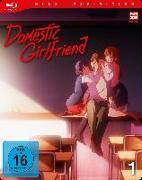 Cover-Bild zu Ihata, Shota: Domestic Girlfriend - Blu-ray 1