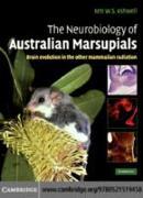 Cover-Bild zu Neurobiology of Australian Marsupials (eBook) von Ashwell, Ken (Hrsg.)