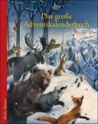 Cover-Bild zu Das grosse Adventskalenderbuch von Stohner, Anu