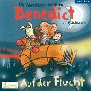 Cover-Bild zu Die Abenteuer des Herrn Benedict - Auf der Flucht (Audio Download) von Baltscheit, Martin