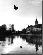 Cover-Bild zu Mein Olten von Capus, Alex