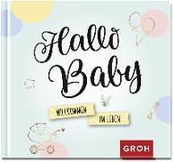 Cover-Bild zu Hallo Baby