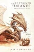 Cover-Bild zu In the Labyrinth of Drakes von Brennan, Marie