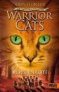 Cover-Bild zu Warrior Cats Staffel 2/03. Die neue Prophezeiung. Morgenröte von Hunter, Erin
