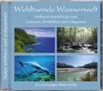Cover-Bild zu Wohltuende Wasserwelt