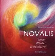 Cover-Bild zu Novalis von Hammacher, Wilfried