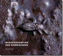 Cover-Bild zu Wasserskorpion und Riemenzunge von Rodewald, Raimund