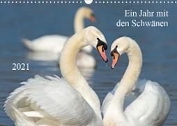 Cover-Bild zu T. Frank, Roland: Ein Jahr mit den SchwänenCH-Version (Wandkalender 2021 DIN A3 quer)