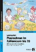 Cover-Bild zu Lernkartei: Plusrechnen im Zahlenraum bis 20 von Willwersch, Sabrina