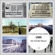 Cover-Bild zu 1989. Die Kleine Chronik 01 von Lauenburg, Frank