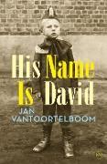 Cover-Bild zu Vantoortelboom, Jan: His Name is David (eBook)
