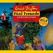 Cover-Bild zu Blyton, Enid: Fünf Freunde und die falsche Prinzessin (Audio Download)