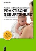 Cover-Bild zu Praktische Geburtshilfe (eBook) von Dudenhausen, Joachim W.