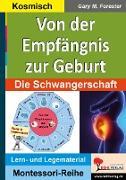 Cover-Bild zu Von der Empfängnis zur Geburt (eBook) von Forester, Gary M.