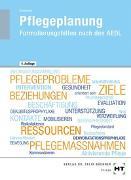 Cover-Bild zu Pflegeplanung von Schwerdt, Christine