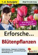 Cover-Bild zu Erforsche... Blütenpflanzen (eBook) von Brandenburg, Birgit