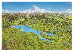 Cover-Bild zu Panoramakarte Bodensee