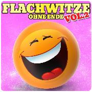 Cover-Bild zu eBook Flachwitze ohne Ende, Vol. 2