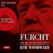 Cover-Bild zu Woodward, Bob: Furcht