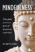 Cover-Bild zu Goldstein, Joseph: Mindfulness (eBook)