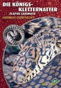 Cover-Bild zu Die Königskletternatter von Gumprecht, Andreas