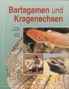 Cover-Bild zu Bartagamen und Kragenechsen von Hauschild, Andree