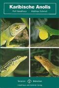 Cover-Bild zu Karibische Anolis von Schmidt, Matthias